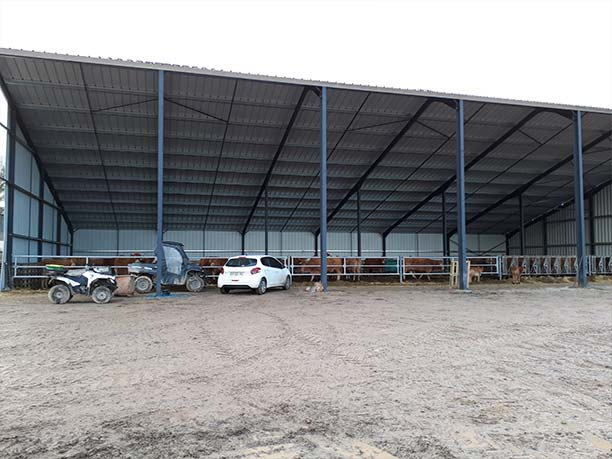 Hangar agricole pour stabulation bovine Creuse (23)